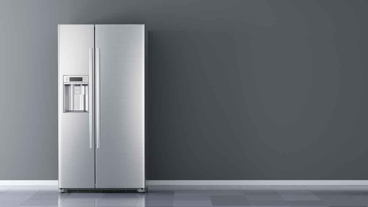 new fridge img