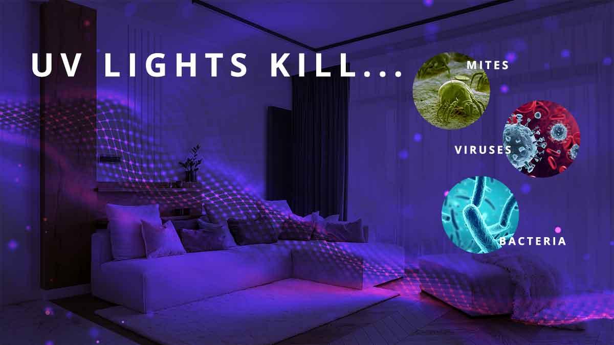 uv lighting kills